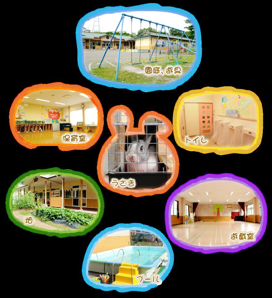 園庭、遊具・保育室・うさぎ・トイレ・畑・遊戯室・プール
